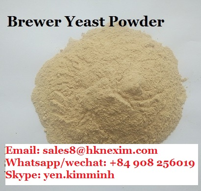 BREWER YEAST POWDER FOR ANIMAL FEED