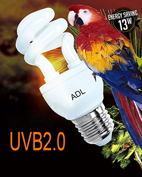 UVB Compact Fluorescent Lamp For Bird