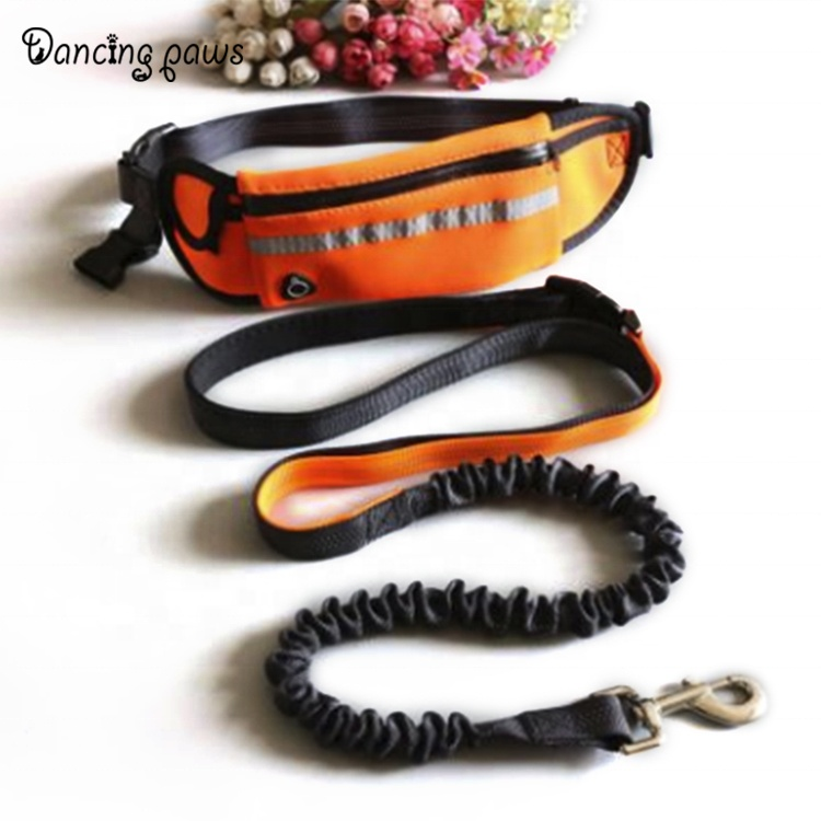 2019 Top rated outdoor polyester traction running retractable dog leash