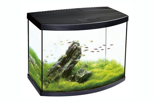Oasis Aquarium - China Desktop Aquariums suppliers