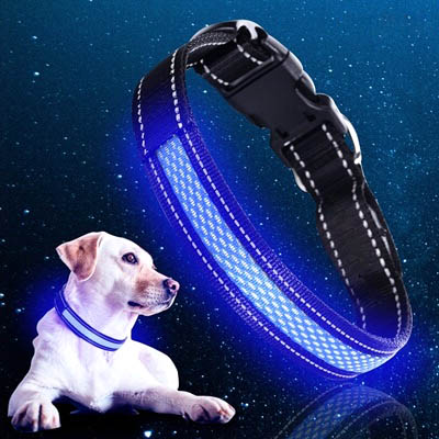 Light-Up LED Pet Collar (USB)